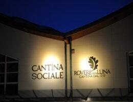 Cantina-Sociale-Rovere-della-Luna-1